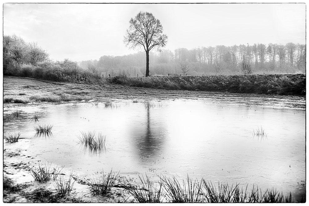 Bildbearbeitung-Black&White